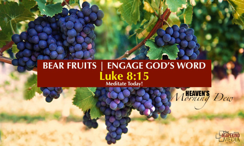 Bear Fruits by Engaging The Word